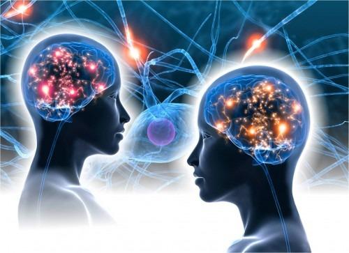 two brains ile ilgili görsel sonucu