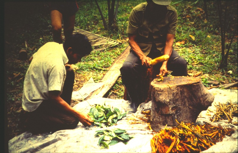 A Huge Dose of Ayahuasca - Lots of Poo - Vomit and Enlightenment    -