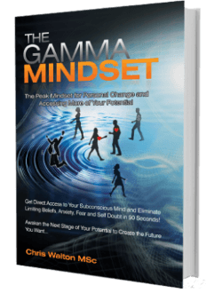 Gamma Mindset Book